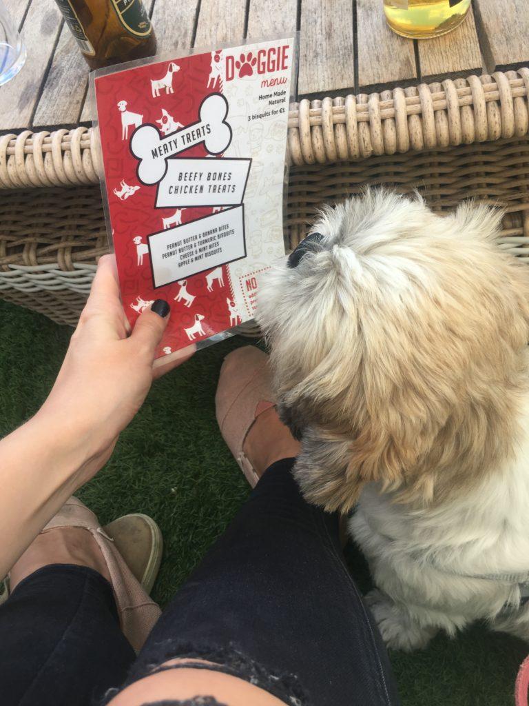 Dog-Friendly Restaurants in Malta: Naar dog menu and dog