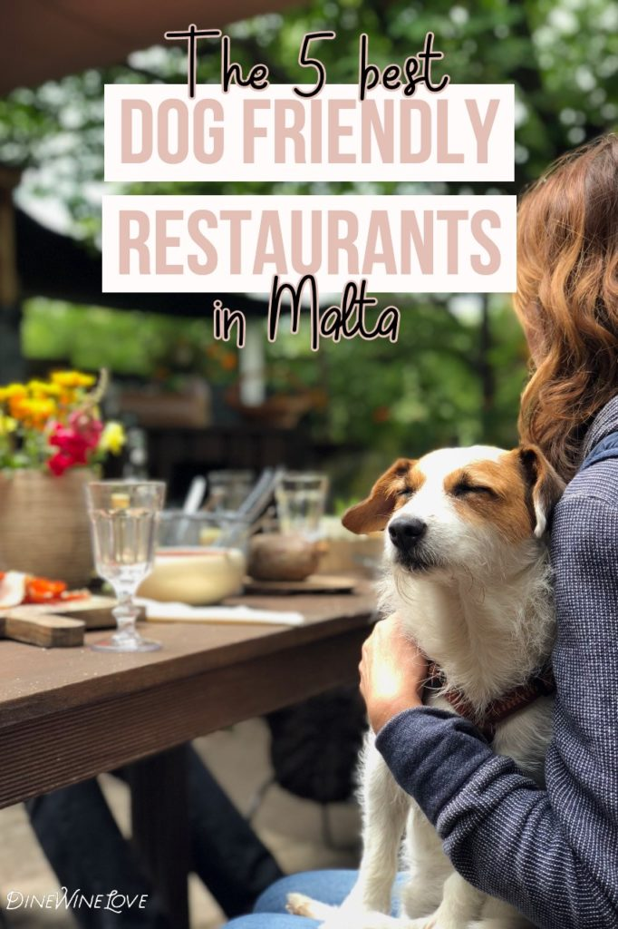 The 5 Best Dog Friendly Restaurants in Malta