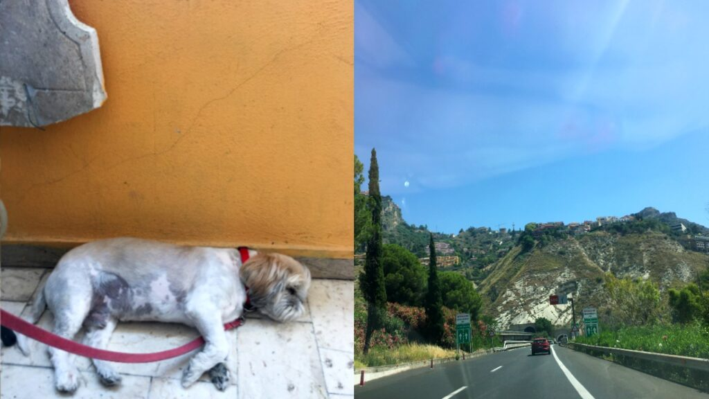 Road trip photos